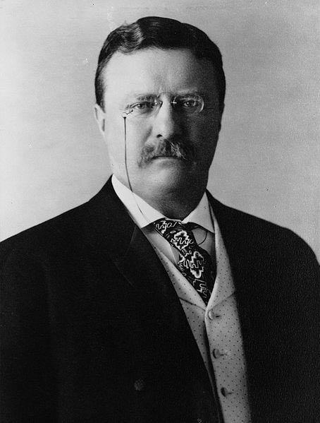 Theodore Roosevelt Biography – 26th U.S. President Timeline & Life