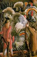 turkeys-perus-1946-by-spencer-sm