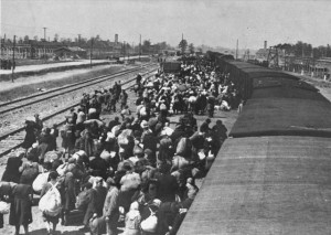 May_1944_-_Jews_from_Carpathian_Ruthenia_arrive_at_Auschwitz-Birkenau