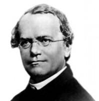 Gregor_Mendel