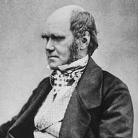 a life history of charles darwin the biologist Throughout my life, i have been fascinated by the natural world and the history of our environment looking into the chemistry and physics of the natural world since.